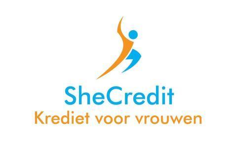 SheCredit wil vrouwelijke MKB-er helpen met het juiste krediet | Afro  Magazine