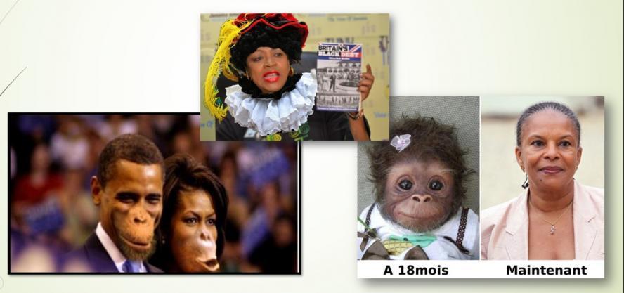 Gedokterde foto's waarin Shepherd als zwarte Piet werd uitgebeeld en de Obama's en de voormalig Franse Minister van Justitie Christiane Taubira -die werd geboren in Frans Guyana- als apen.